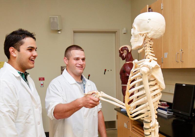 folsom lake college, 2010, students, science, lab, classroom, skeleton, human,