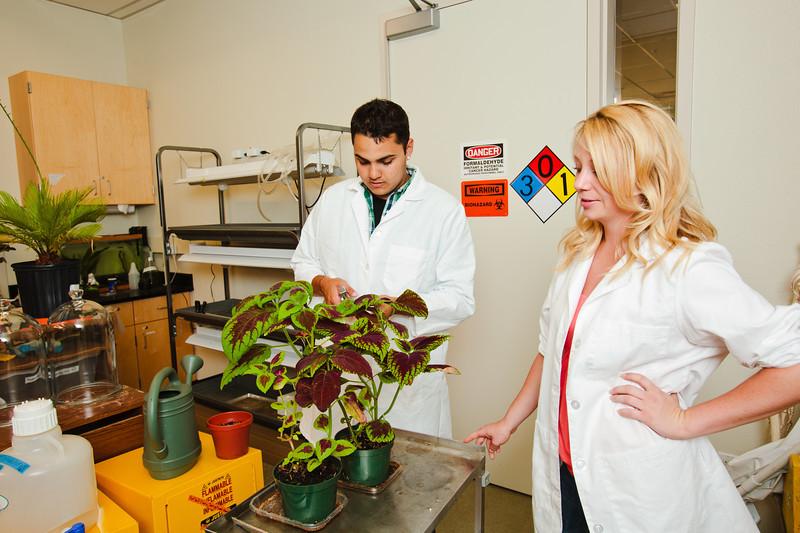 folsom lake college, 2010, students, science, lab, classroom, plants