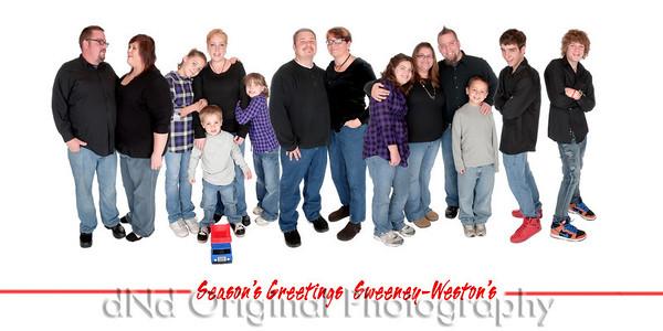 Entire Family Seasons Greeting (4x8)