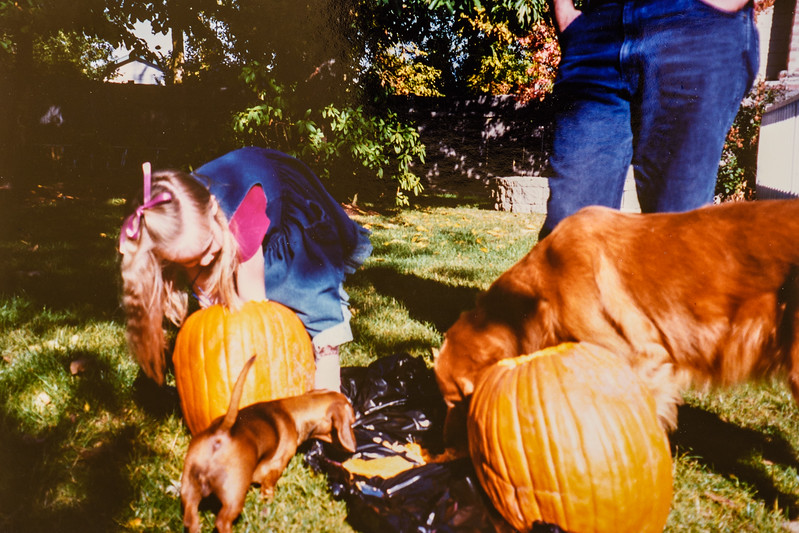 Nice view of Cali's rear! Other dog dad's (Molly) Micheala Jarvie October 1994