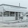 The taxidermy shop