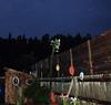Tiki Bar and  Cactus Garden