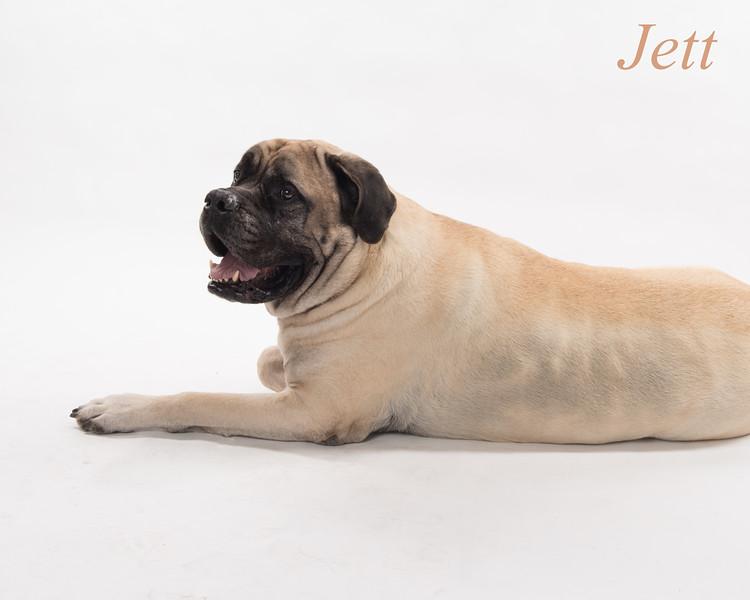 Jett natural color-9401