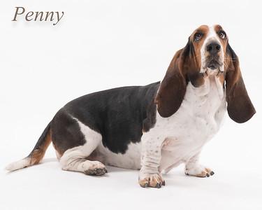 Penny finals-9422