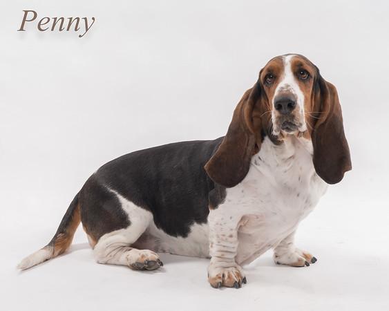Penny finals-9423