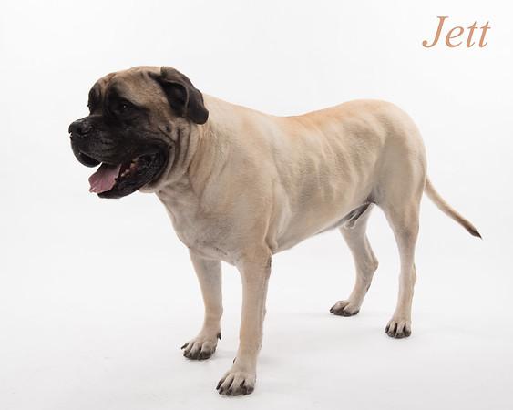 Jett set 3-9346