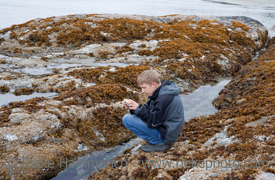 Teenage Boy photographing Sea Life in Tidal Pool - Long Beach, Pacific Rim National Park, Vancouver Island, British Columbia, Canada