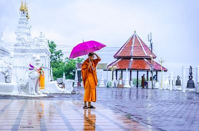 Monk with purple umbrella.
