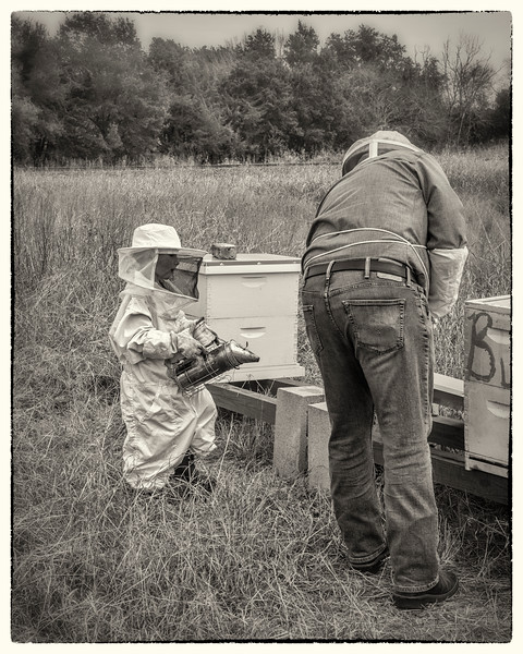 """The Bee Keeper's Son"" - No. 3 in the Series"