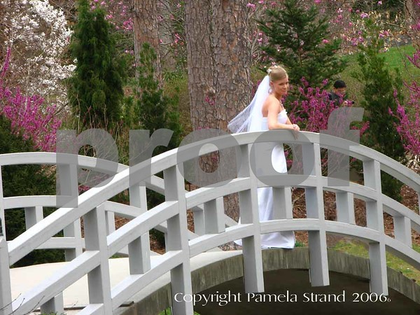 Duke Gardens is a popular place for brides to have their photos taken.  This bride/model Reese Witherspoon look alike was posing for several photographers.  I was in the right place at the right time.