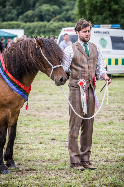 Horse Exhibiting