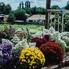 Hilyard Ave Flower garden 2004