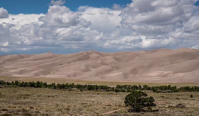Undulating dunes; ever-changing