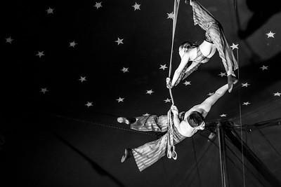 Aerial Acrobatics B&W