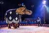 Dancing Elephant 1