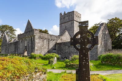 Muckross Abbey, near Killarney, Ireland