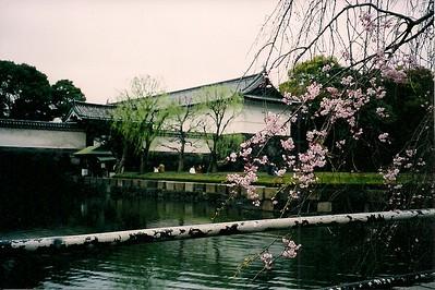 Imperial East Garden Japan
