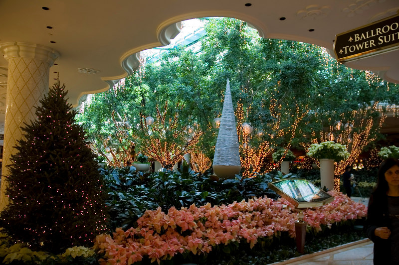 Near the entrance of the Wynn.