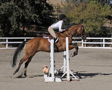 Walnut Creek Equestrian Center Horse Show