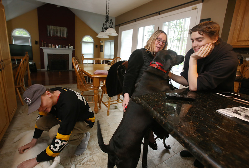 Cornetta quadruplets are graduating from high school. Joanne Cornetta of Westford with son Dan, right, and the family's one-year-old black Lab, Mason. At left is son Joe with nine-year-old yellow Lab, Juliet. (SUN/Julia Malakie)