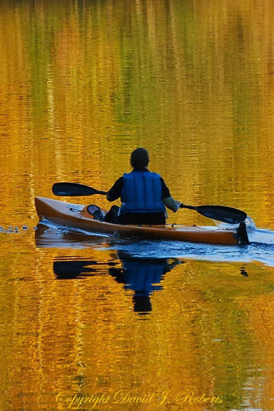 Paddle across the mirror of lake