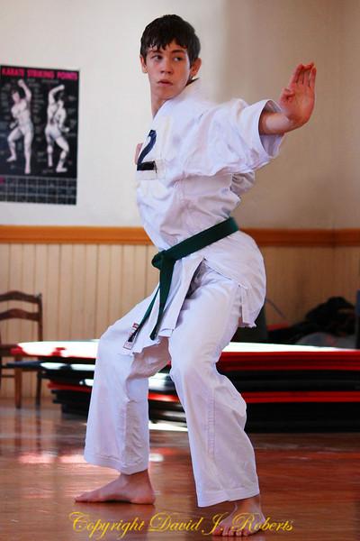 Shinsa, karate