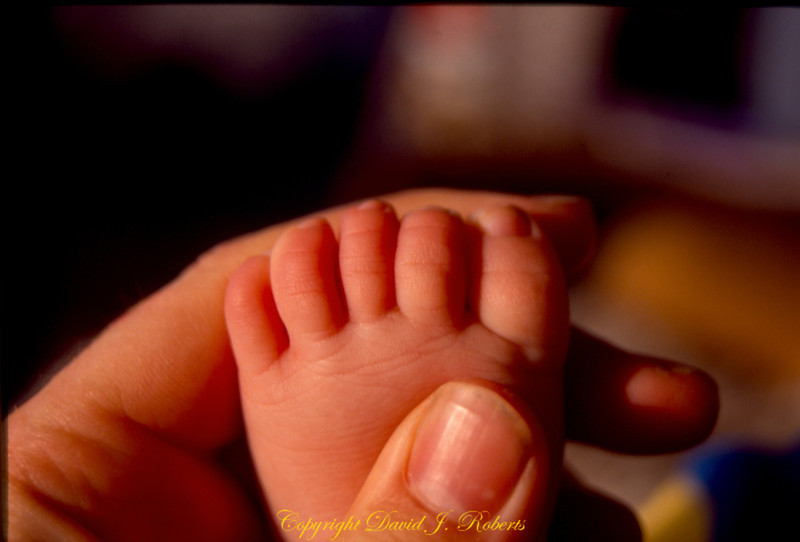 Baby toes - where will you travel?