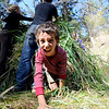 "Emmett Manzella, 7, craws out of the grass hut at the door is attached.<br /> Simon Harrison teaches a ""primitive skills"" class at Lion's Gulch, outside Pinewood Springs.<br /> For a video and more photos of the program, go to  <a href=""http://www.dailycamera.com"">http://www.dailycamera.com</a>.<br /> Cliff Grassmick / September 16, 2011"