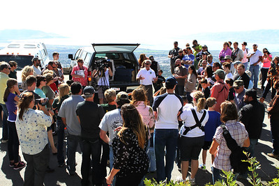 The crowd at 2013's Raptor Watch Day just east of Orem.