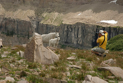 Photographer shooting pictures of a wild nanny goat and her kid.