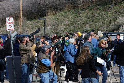 Viewers focus on mountain goats at the Rocky Mountain goat viewing event in 2010.  Photo by Scott Root, Utah Division of Wildlife Resources