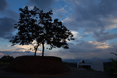 At the top of Parque Monumento (Monument Park) there are two guamo trees that have naturally intertwined to form a single canopy, providing a symbol that represents solidarity, hope and resistance. It has been name the Árbol del Abrazo (Hugging Tree).