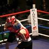 YH Boxing 27-11-15 235