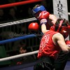 YH Boxing 27-11-15 243
