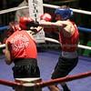 YH Boxing 27-11-15 238