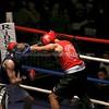 YH Boxing 27-11-15 166