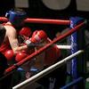 YH Boxing 27-11-15 239