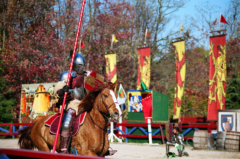 Knight on a Horse Photograph