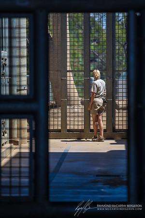 San Diego Zoo || San Diego, California, USA  Canon EOS 6D w/ EF70-200mm f/2.8L USM: 200mm @ ¹⁄₄₀₀ sec, f/2.8, ISO 100