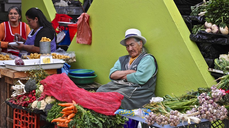 The market - Cuenca