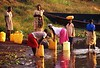 "These young women are getting water from Lake Victoria, very close to the source of the Nile.  It is about one kilometer from their village and they will carry the ""jerry cans"" on their heads back to the village where the water will be used for cooking, drinking, clothes washing, and personal hygiene.  They may make this trip several times each day.  Younger children will carry smaller jerry cans."