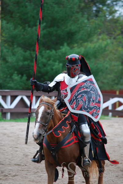 Knight on Horse Photograph