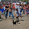 Children chasing the chickens at the rodeo, Hamilton, Montana
