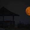 Gazebo In The Super Moon