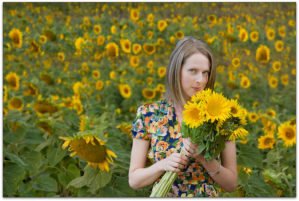 Picking Sunflowers