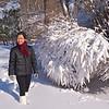 Snow Scene Contrast