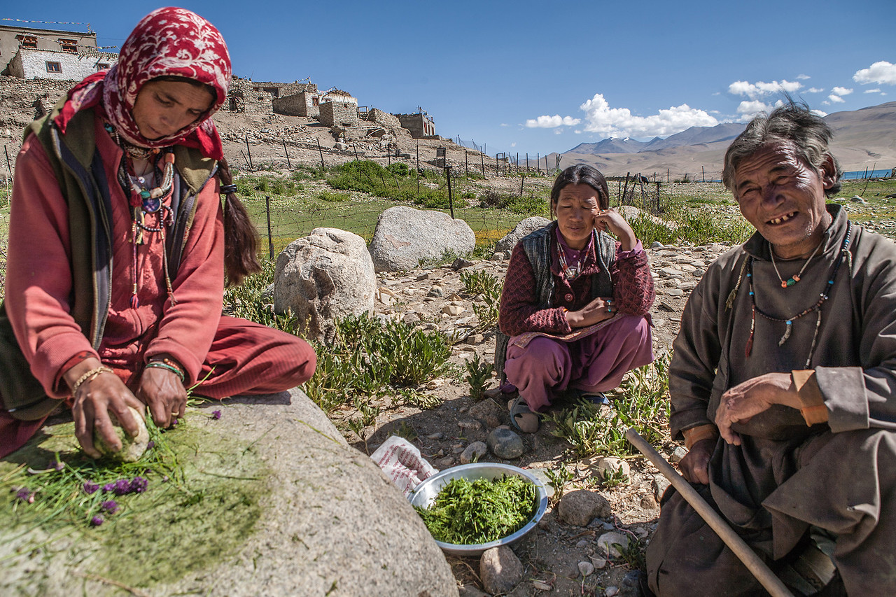 Women making spices at Tso Moriri, Ladakh, India