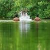Munroe Island Backwaters, Munroe Island, Kollam, Kerala