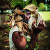 Vanuatu, Paama, Man Blowing a Conch