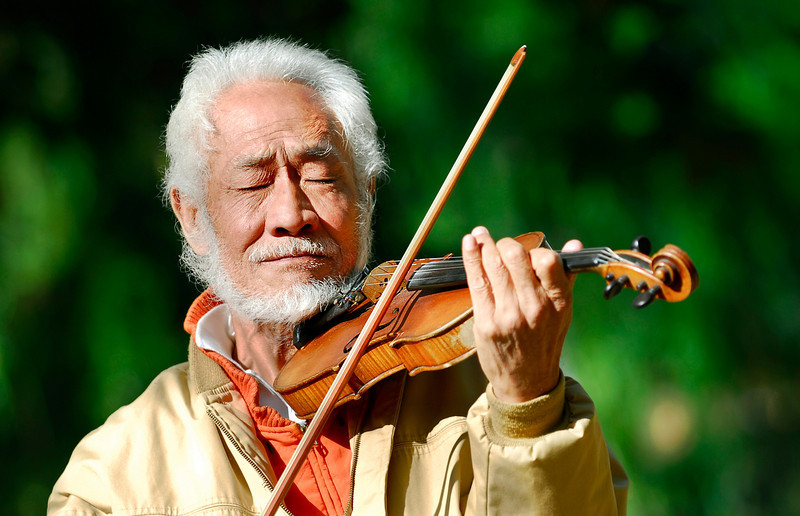 Violinist Crop 1158